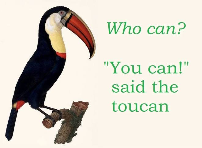 you can toucan
