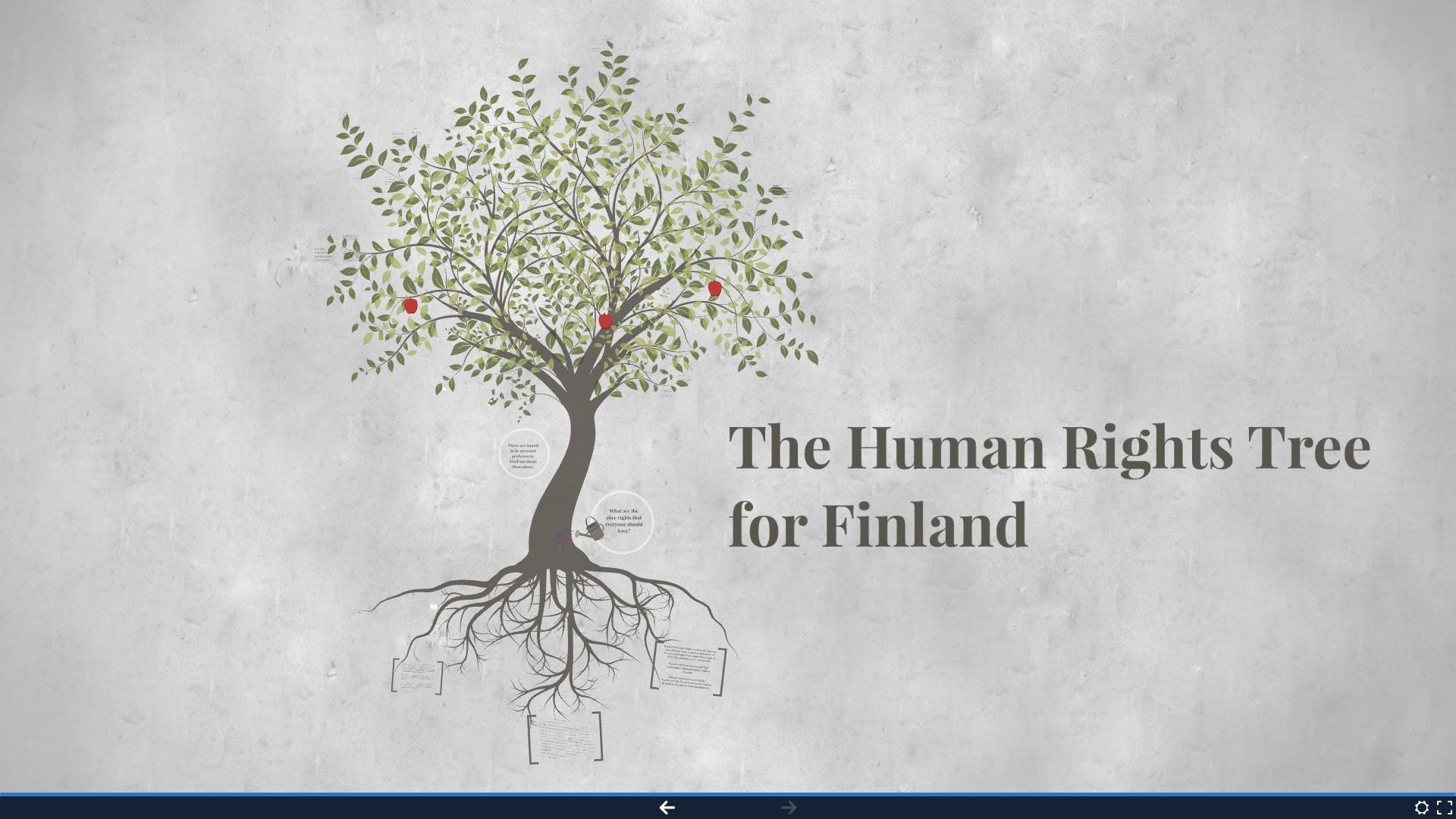 The Human Rights Tree - Aloituskuva